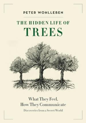 Hidden Life of Trees af Peter Wohlleben