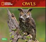 National Geographic Owls 2018 Wall Calendar