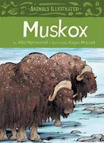 Muskox (Animals Illustrated)