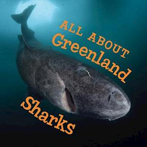 All about Greenland Sharks