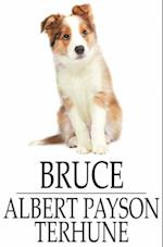 Bruce af Albert Payson Terhune