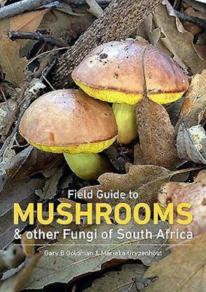 Field Guide to Mushrooms and Other Fungi of South Africa