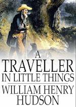 Traveller in Little Things