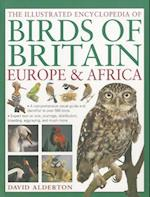 The Illustrated Encyclopedia of Birds of Britain, Europe & Africa af Peter Barrett, David Alderton