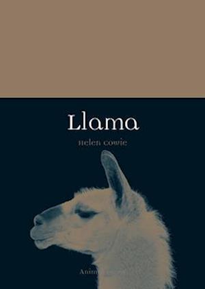 Bog, paperback Llama af Helen Cowie