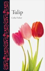 Tulip (Botanical)