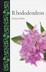 Rhododendron (Botanical)
