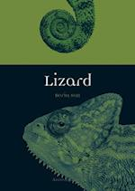 Lizard (Animal)