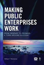 Making Public Enterprises Work