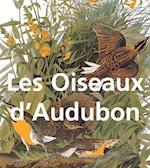 Les Oiseaux d'Audubon (Mega Square)