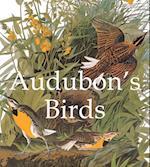 Audubon's Birds (Mega Square)