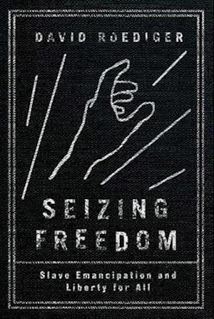 Bog, hardback Seizing Freedom af David Roediger