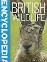 Mini Encyclopedia - British Wildlife (Mini Encyclopedia)