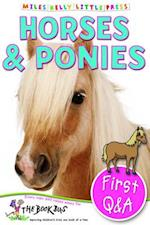 First Q&A Horses & Ponies (Little Press)