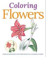 Colouring Flowers