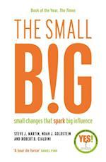 small BIG af Steve Martin