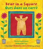 Bear in a Square / Ours dans un carré