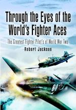Through the Eyes of the World's Fighter Aces