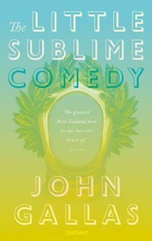 Little Sublime Comedy af John Gallas