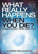 What Really Happens When You Die? af Andrew McLauchlin