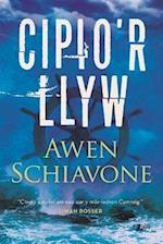 Cipio'r Llyw af Awen Schiavone