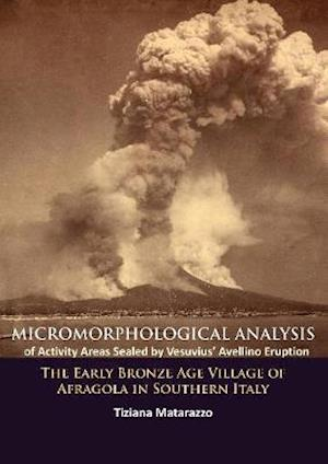 Micromorphological Analysis of Activity Areas Sealed by Vesuvius' Avellino Eruption