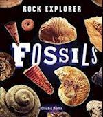 Rock Explorer: Fossils (Rock Explorer)