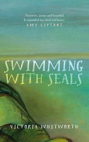 Swimming with Seals