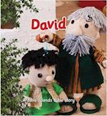 David (Bible Friends)