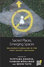 Sacred Places, Emerging Spaces (Space and Place)