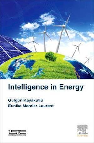 Intelligence in Energy