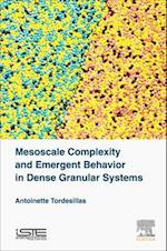 Mesoscale Complexity and Emergent Behavior in Dense Granular Systems