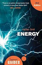 Energy (Beginner's Guides)