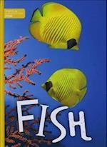 Fish (Animal Classification)