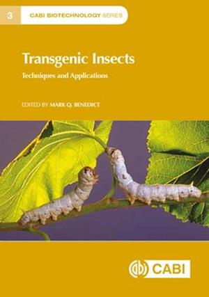 Transgenic Insects