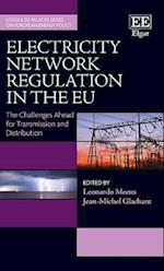 Electricity Network Regulation in the Eu (Loyola De Palacio Series on European Energy Policy)
