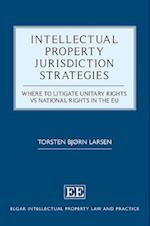 Intellectual Property Jurisdiction Strategies (Elgar Intellectual Property Law and Practice Series)