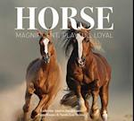 Horse (Best Kept Secrets)