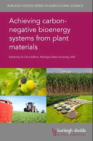 Achieving Carbon-Negative Bioenergy Systems from Plant Materials