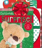 Board Book Christmas Surprises!