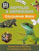 Bear Grylls Colouring Books: Reptiles