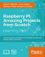 Raspberry Pi: Making Amazing Projects Right from Scratch! af Richard Grimmett, Matthew Poole, Ashwin Pajankar