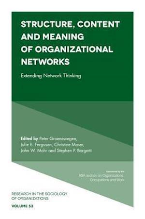 Bog, hardback Structure, Content and Meaning of Organizational Networks af Peter Groenewegen