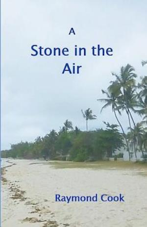 Bog, paperback A Stone in the Air af Raymond Cook