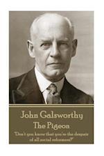 John Galsworthy - The Pigeon