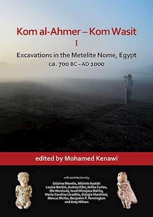 Kom al-Ahmer - Kom Wasit I: Excavations in the Metelite Nome, Egypt