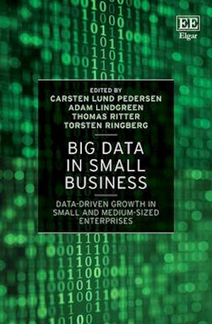 Big Data in Small Business