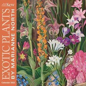Kew Gardens: Exotic Plants by Marianne North Wall Calendar 2022 (Art Calendar)