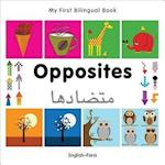 My First Bilingual Book - Opposites (My First Bilingual Book)