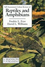 Reptiles and Amphibians (Veterinary Self assessment Color Review Series)
